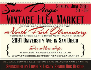 Vintage Flea Market North Park