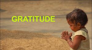 Gratitude 2015